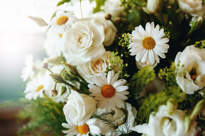 Kwiaty – gdzie można je postawić lub posadzić?